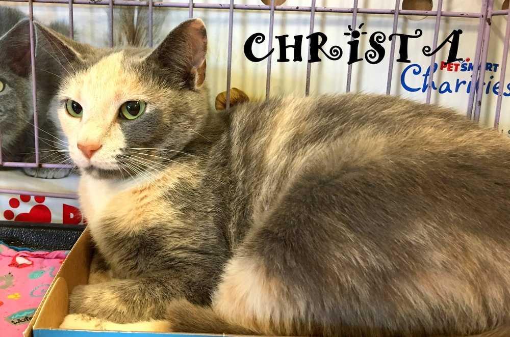Christa3