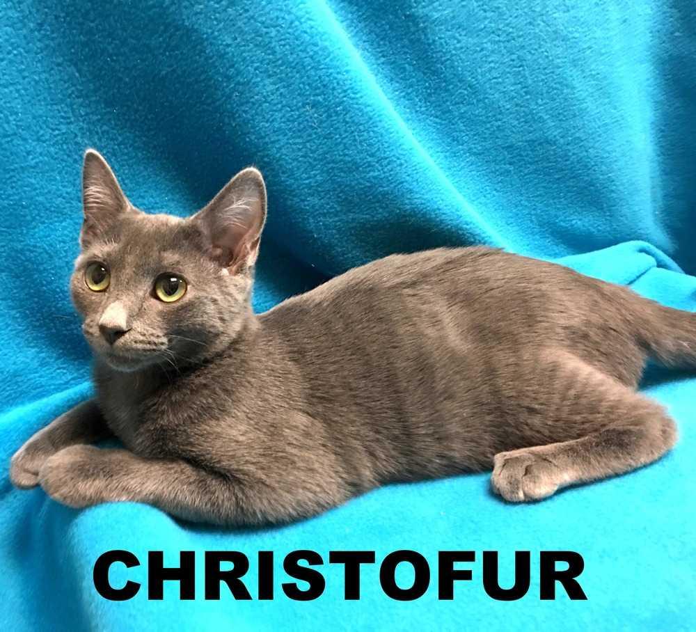 Christophfur