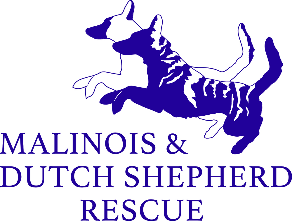 Petstablished Malinois And Dutch Shepherd Rescue Inc Has Pets For Adopt