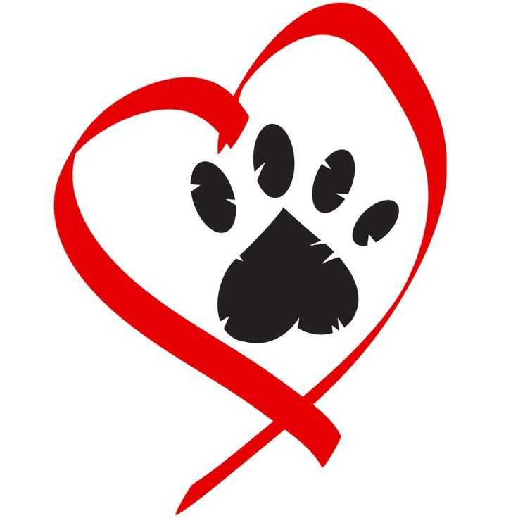 Image result for animal love clipart